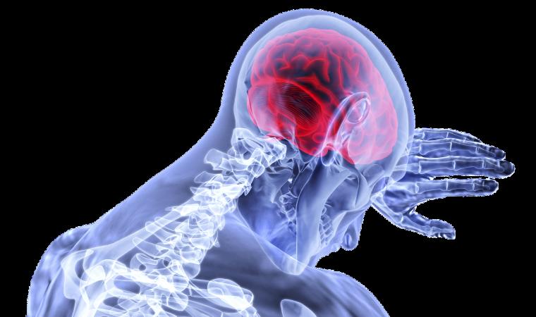 Jak ustrzec się udaru mózgu? Skorzystaj z bezpłatnych i bezbolesnych badań sfinansowanych przez Powiat Oświęcimski powiat oswiecim pl